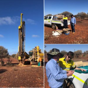 Infill Drilling Program Auralia